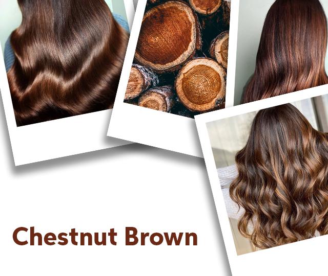 Chestnut Brown Hair Color Ideas Formulas Wella Professionals