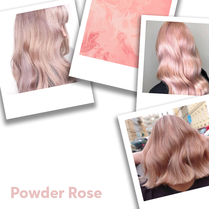 Collage of powder rose hair colour