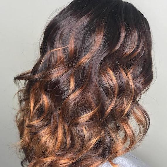 Photo of the back of a woman's head, featuring long dark brown hair with copper highlights, created using Wella Professionals.