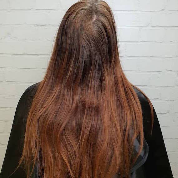 Back of woman's head with long red-brown hair and gray roots.