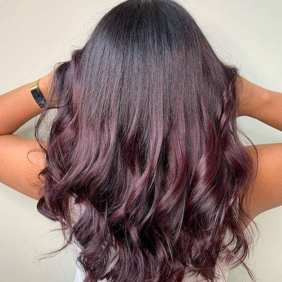 Back of woman's head with dark brown hair and plum mid-lengths and ends, created using Wella Professionals.