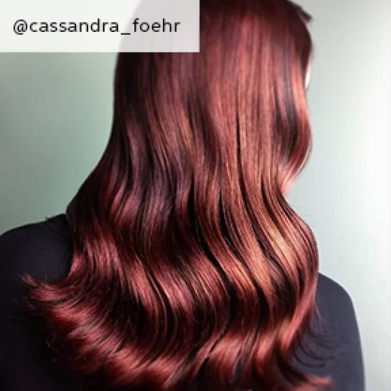 Back of woman's head with dark auburn hair, created using Wella Professionals.