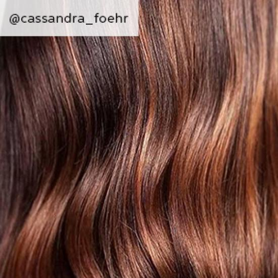 close up of chestnut brown hair