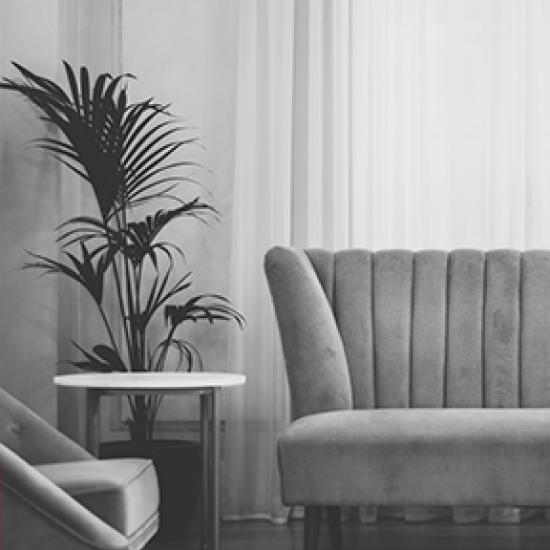 Grey-toned image of plant and sofa.
