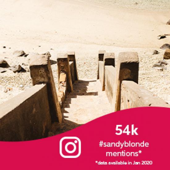 Steps leading to a sandy beach.