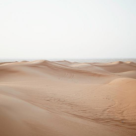 Desert.