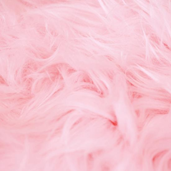 Image of pink feathers