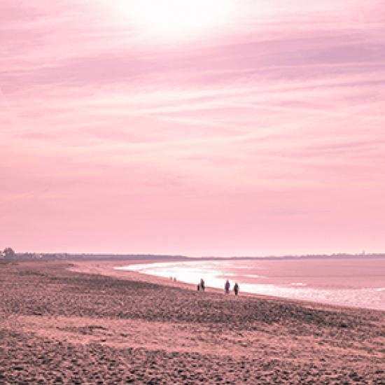 Image of pink sunset