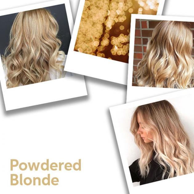 Polaroid photo collage of powered blonde hair ideas, styled with loose waves