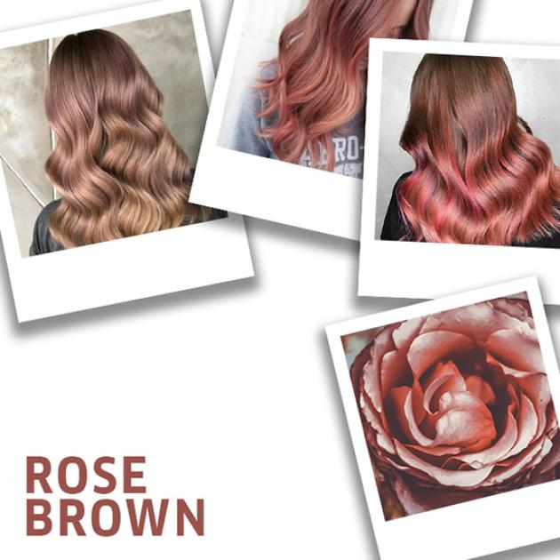 Collage of rose brown hair color ideas.