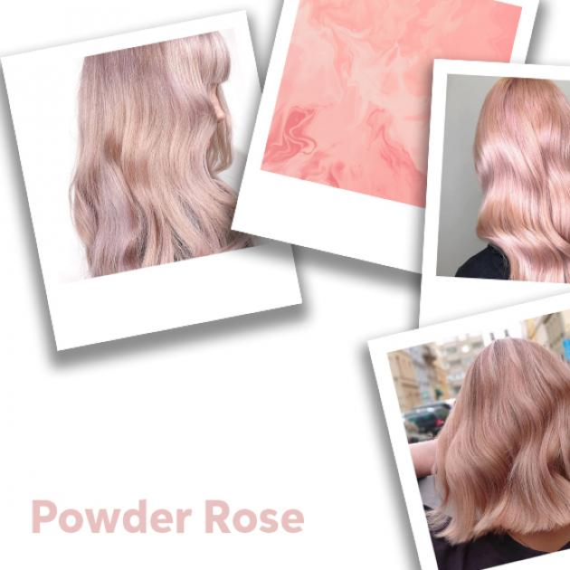 Collage of powder rose hair color